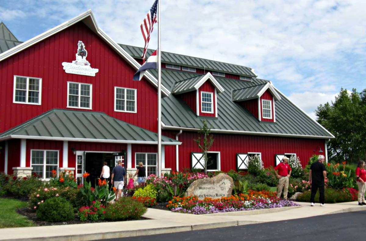 Budweiser Clydesdale farm  offers tours by reservation and a holiday lights tour in November and December